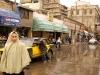 Pluie d'Alexandrie